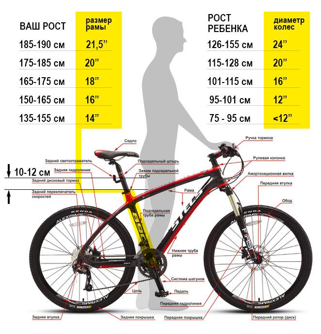 Что  учитывать при покупку велосипеда для ребенка